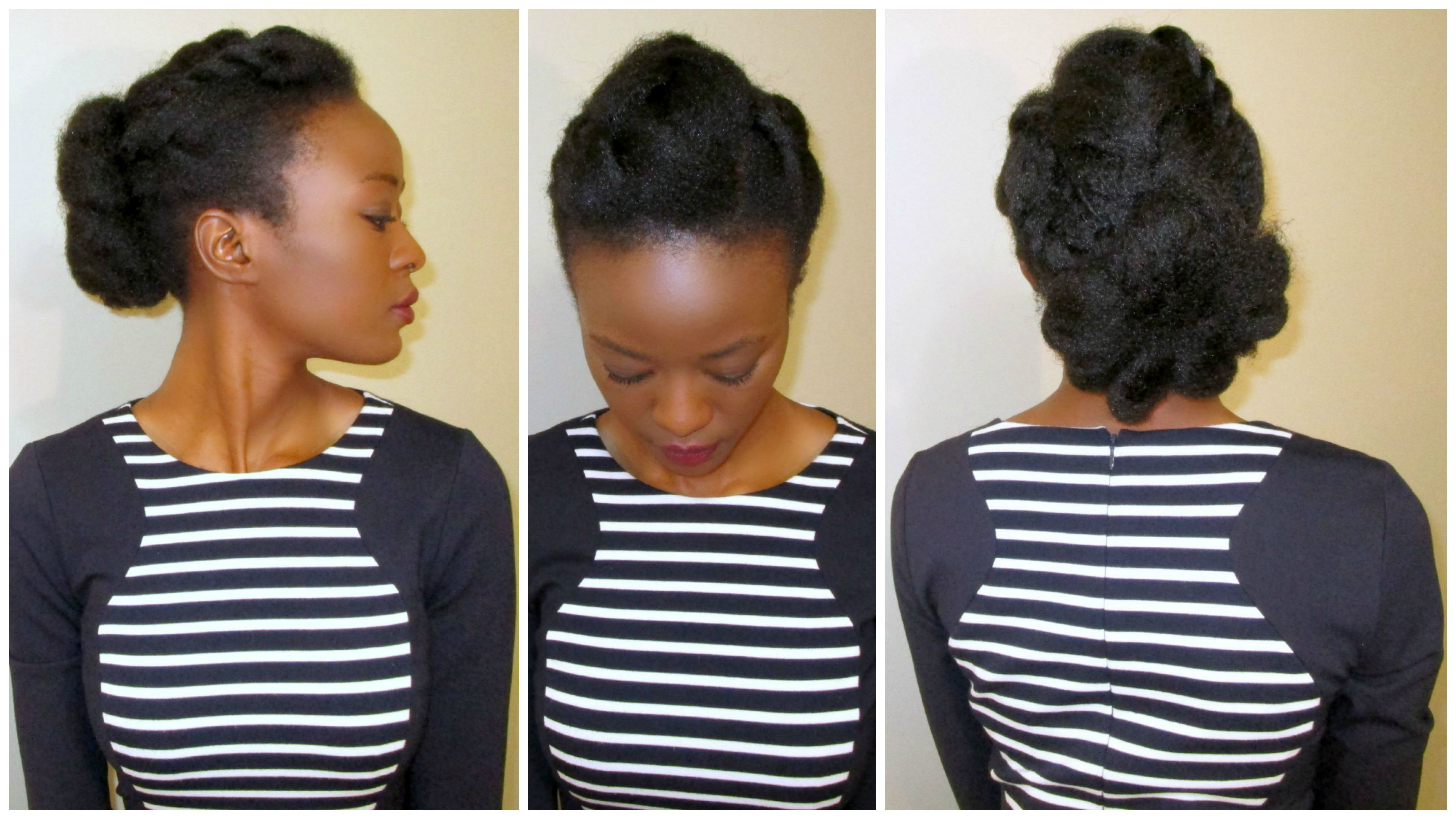 Natural Hair 4c Hairstyles Www Imgkid Com The Image Kid Has It